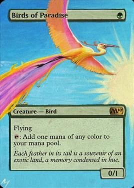 Vign_bird_of_paradise-sunny