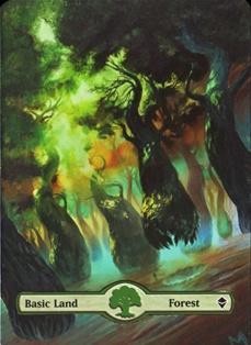 Vign_forest